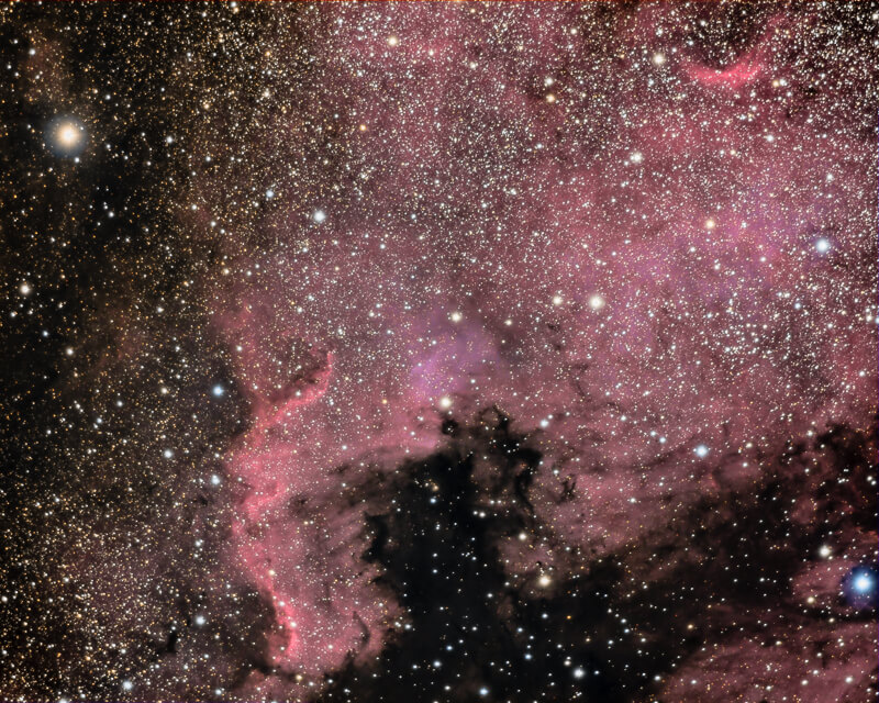 Nébuleuse North America (NGC 7000)